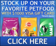 Stock up on Pet Food